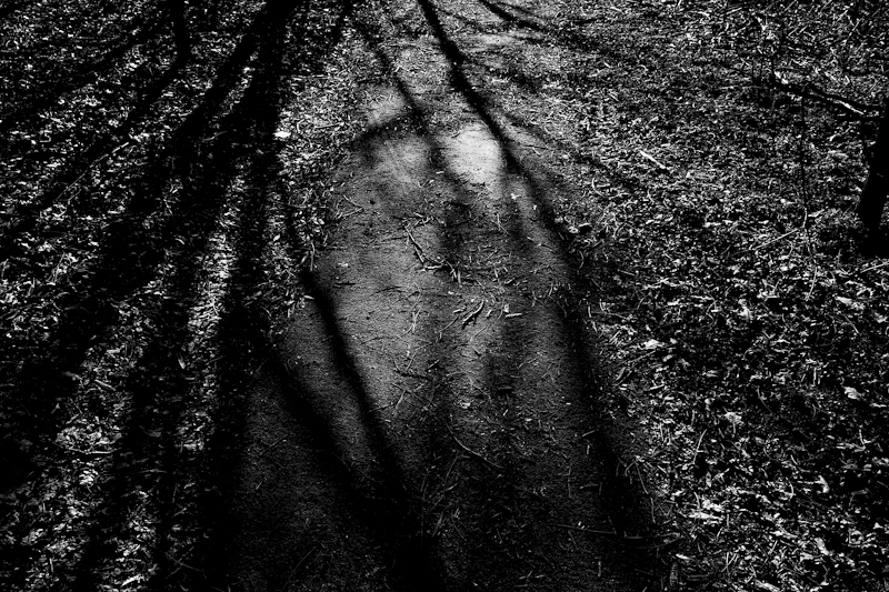 Light and shadows by Wouter Brandsma