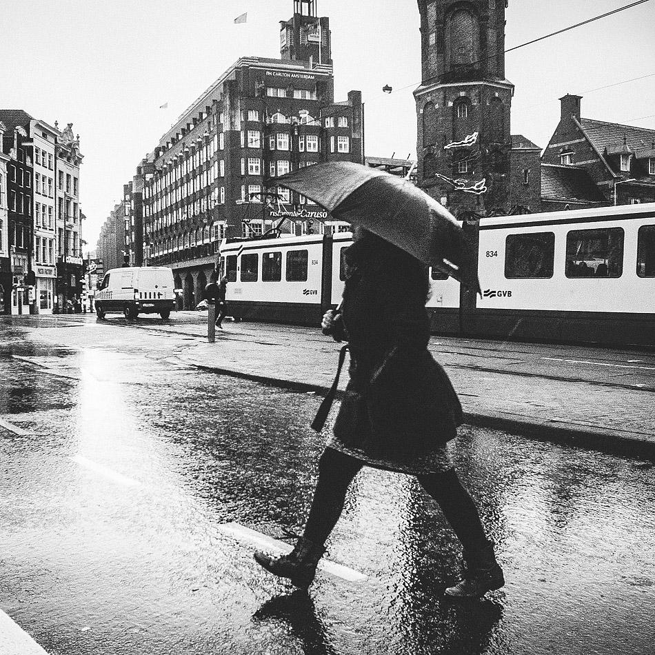 Rainy steps