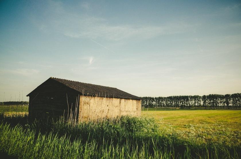barn, agriculture, rural, color, colour, photography, photograph, landscape photography, stroll photography, trees, meadows, grass, sky, light, shadow, light and shadow, ricoh gr, gr ricoh, ricoh, gr, pentax, pentax ricoh, pentax gr, ricoh gr digital, ricoh grd, wouter brandsma