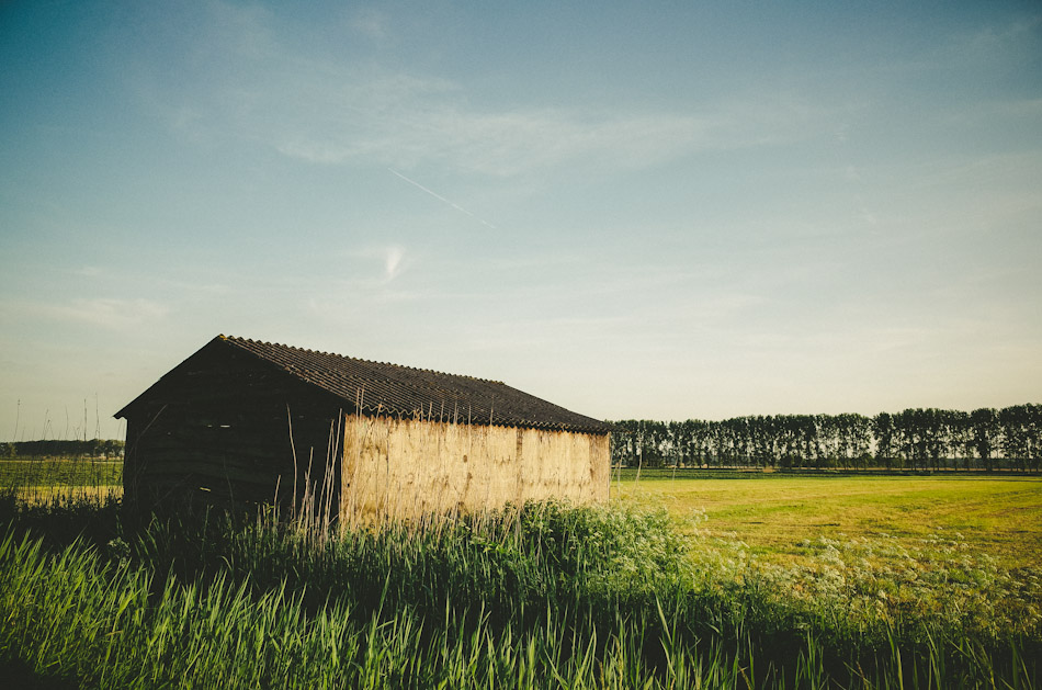 barn, agriculture, rural, color, colour, photography, photograph, landscape photography, stroll photography, trees, meadows, grass, sky, light, shadow, light and shadow, ricoh gr, gr ricoh, ricoh, gr, pentax, pentax ricoh, pentax gr, ricoh gr digital, ricoh grd, wouter brandsma