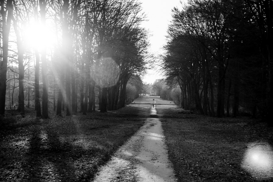 photography, photograph, wouter brandsma, black and white, light, shadow, light and shadows, stroll photography, pentax, pentax k-3