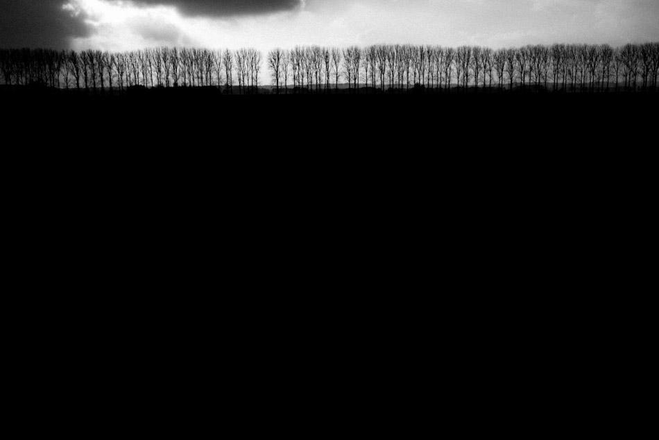 untitled-131